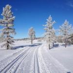 vinter20157